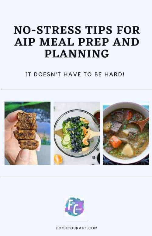AIP Ebook cover 500
