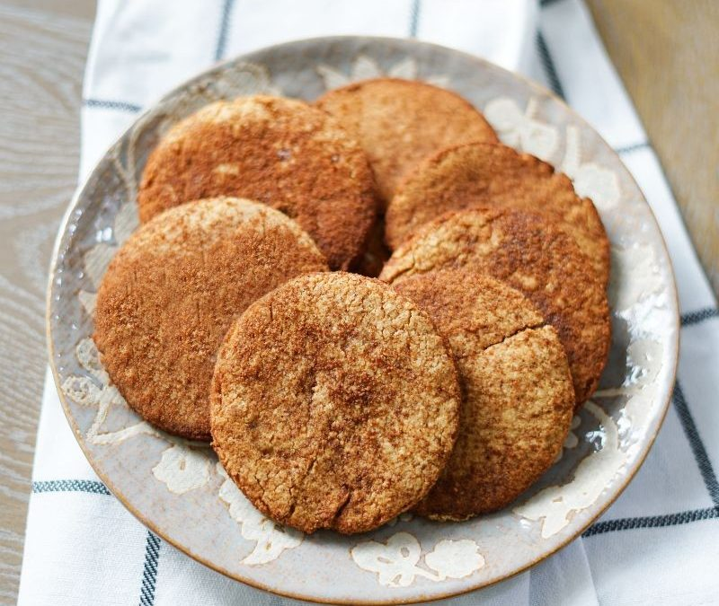 aip snickerdoodle cookie