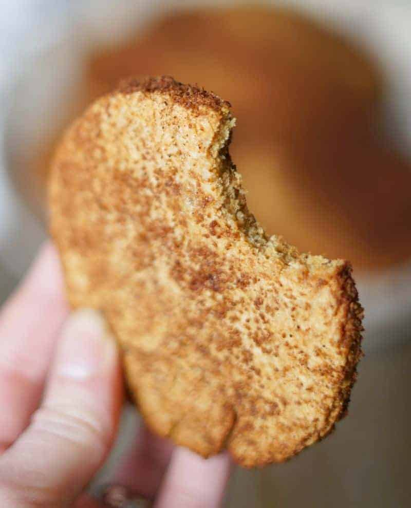 aip snickerdoodle