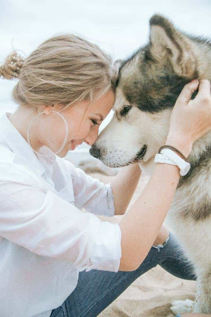 calm a hashimoto's flare- spend time with pets