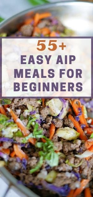 Easy AIP Meals for Beginners (1)